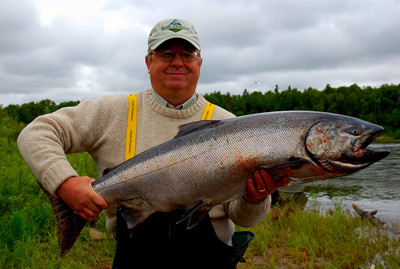 a large king/chinook salmon caught while fishing with guides on alaska's nushagak river near our fishing lodge