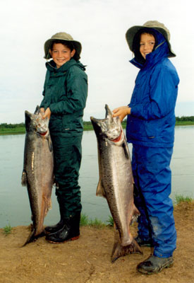Young fishermen pose with their catch of king/chinook salmon on the bank Alaska's Nushagak River.