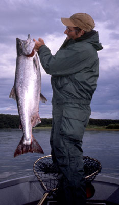 a fisherman holds a king/chinook salmon in the bow of a nushagak river fishing boat in alaska