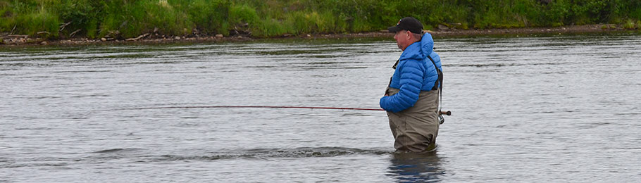 Where is the best fly fishing for king chinook salmon in for Best fishing in alaska